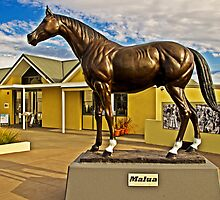 Malua - THE Most Versatile Australian Racehorse by TonyCrehan