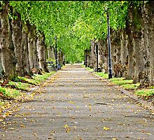 """ Riverside Walk Evesham"" by Malcolm Chant"