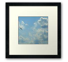 Dive Bomber! Framed Print