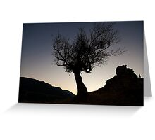 Tree Silhouette at dusk Greeting Card