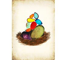 My Colorful Bird Babies Photographic Print