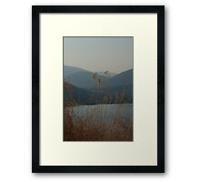 Looking over the bay Framed Print