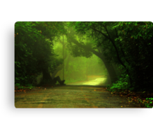 Monsoon Moods Canvas Print