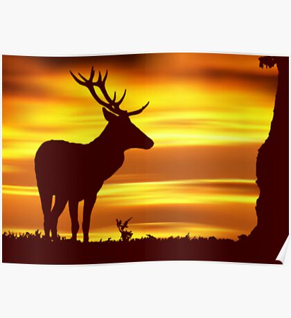 Deer at Dusk Poster