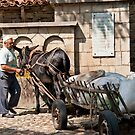 Rural Life - Bulgaria by DonDavisUK