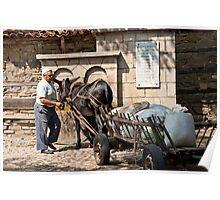 Rural Life - Bulgaria Poster