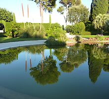 Reflections At The Villa by Fara
