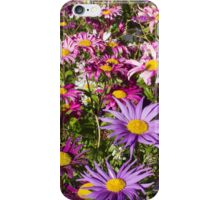 Daisy drama in pinks and purples -1 iPhone Case/Skin