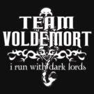 Team Voldemort! Version 2 by JordanDefty