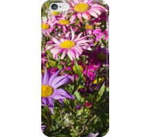 Daisy drama in pinks and purples – 2 iPhone Case/Skin