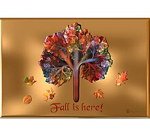 Fall Is Here!! Photographic Print