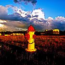 Fire hydrant in the middle of nowhere by Daniel Sorine