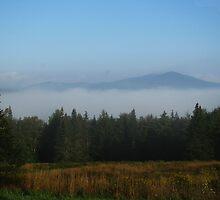 Valley Morning Fog by Doug Gruber