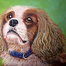 Cavalier King Charles Spaniel by Hilary Robinson