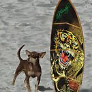 Surf's Up by Jamie Lee