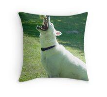 Catcher's Mitt Throw Pillow