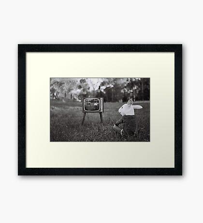 The Box Framed Print
