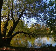 Down by the Riverside ! by Elfriede Fulda