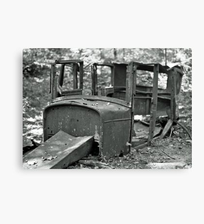 Forgotten Cadillac Canvas Print