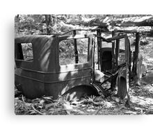 Forgotten Cadillac Canvas Print