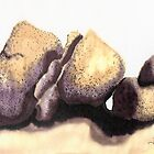 c11-Soft Boulders by James Lewis Hamilton