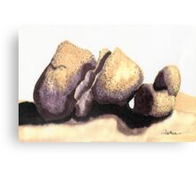 c11-Soft Boulders Canvas Print