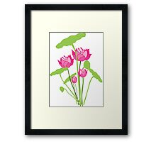 Pink color water lily flower Framed Print