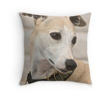 Beautiful Boy - Whippet Throw Pillow