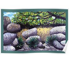 Tree and Boulders Poster