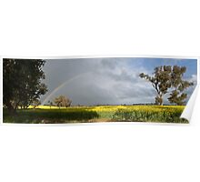 Rainbow Over Canola Poster