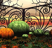 The Pumpkin  Patch by plunder