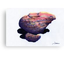 A Big Boulder atop a Small One Canvas Print