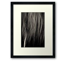 Prairie Grass Waltz Kitty Todd Nature Preserve Framed Print