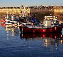 A Safe Harbour by Steve Bryant