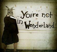 Not Wonderland by strawberries