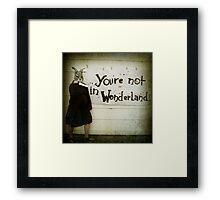 Not Wonderland Framed Print
