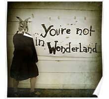 Not Wonderland Poster