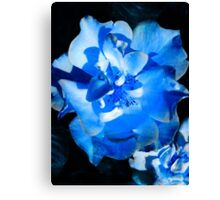 Blue Rose. Canvas Print