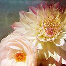 Rose & Dahlia by Lynn Starner
