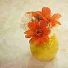 Orange daisies in yellow vase by Lynn Starner