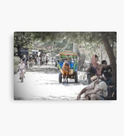 Cidomo horse carts of the Gili Islands 2.  Metal Print