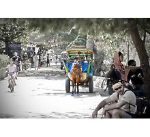 Cidomo horse carts of the Gili Islands 2.  Photographic Print