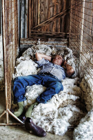 WOOL CLASSER SNOOZE by Helen Akerstrom Photography