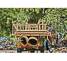 Cidomo horse carts of the Gili Islands 3 Photographic Print