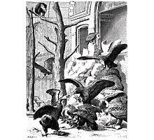 Heinrich Leutemann Die Gartenlaube 1864 b 165 Photographic Print