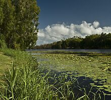 Ross River scenery by Drofidits
