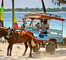 Cidomo horse carts of the Gili Islands 5 by Normf