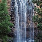 Rushing Falls at Trentham by Lozzar Landscape