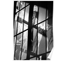 Reflected Images Poster
