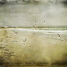Born Free ~ by Edge-of-dreams